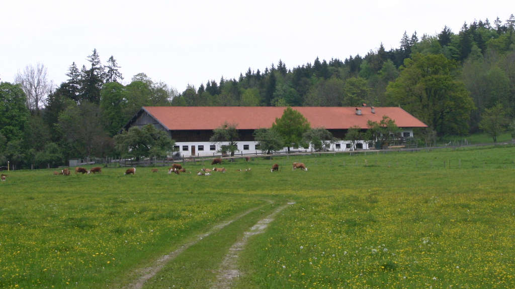 Singles wolfratshausen