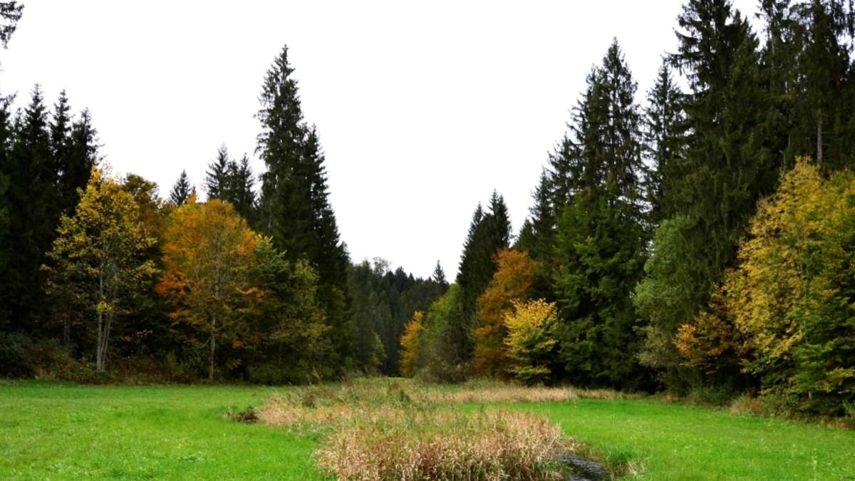 Singles im landkreis miesbach