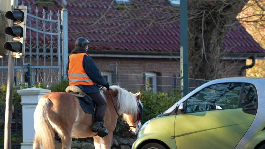 Pferd Auto